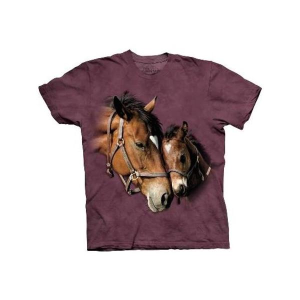 Tee shirt enfant amours de chevaux - 13:14 ans