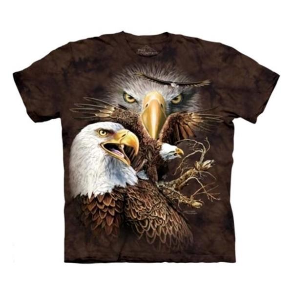 Tee shirt 14 Aigles