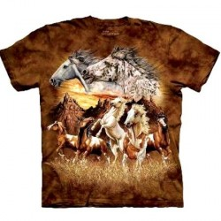 Tee shirt Cheval - Find 15 Horses taille XL