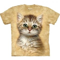 Tee shirt Chat - Brown Striped Kitten - Taille M