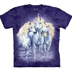Tee shirt Licorne - Find 10 Unicorns -S