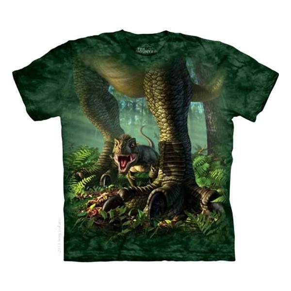 Tee shirt enfant Dino - Wee Rex