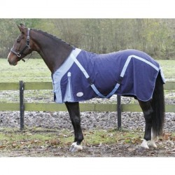 Chemise poney coton Harry's Horse T105