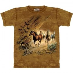 Tee shirt Passage sacré