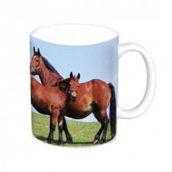 Mug Cheval - Jument et poulain