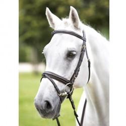 Bridon cuir Daslo Vernis noir cheval