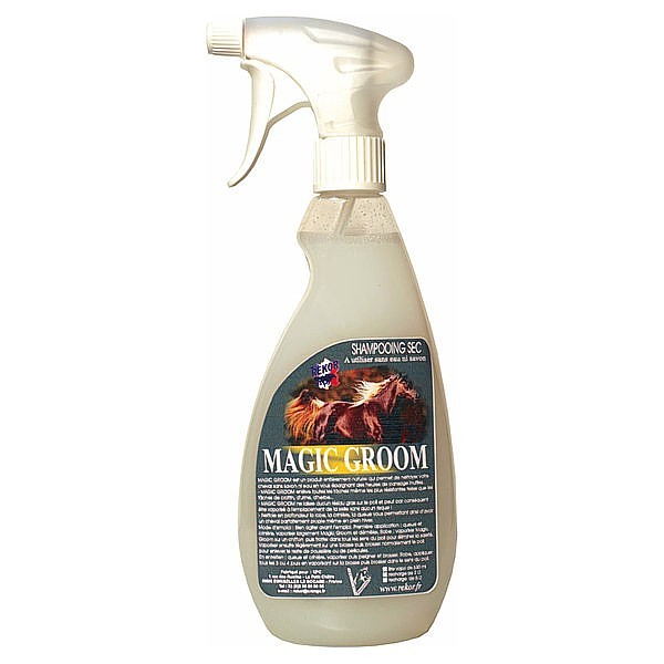 Magic Groom Rekor
