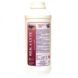 REK A LYTE - Electrolytes liquides