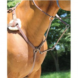 Collier de chasse 5 points Brio Treadstone